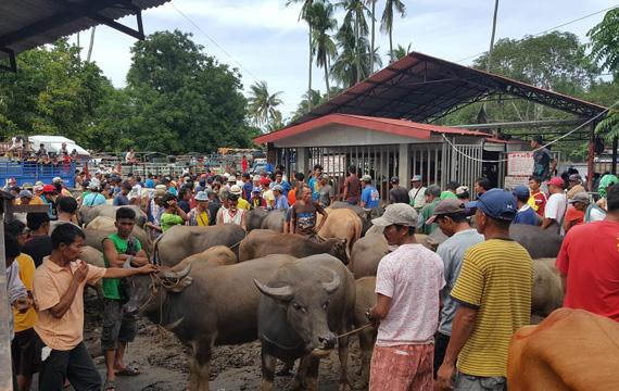 Market at Malatapay Negros Oriental